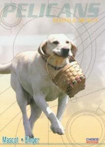 dogcard1dinger