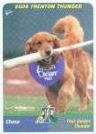 dogcard2chase