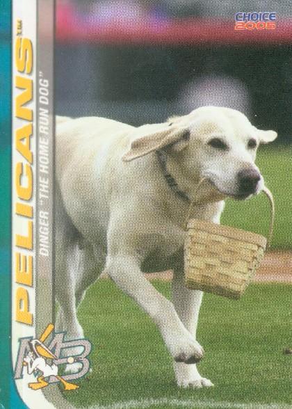 dogcard3dinger